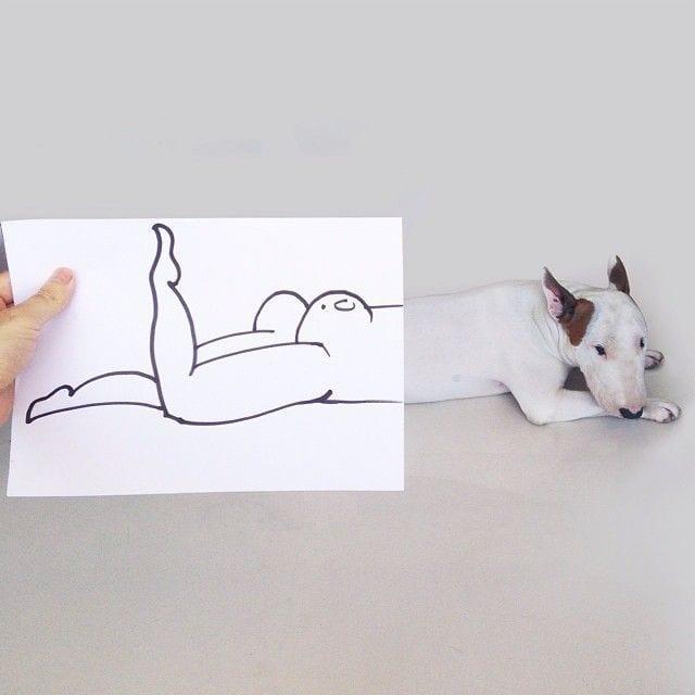 bull-terrier03