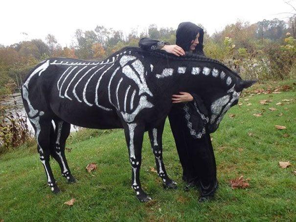 animales-halloween-2