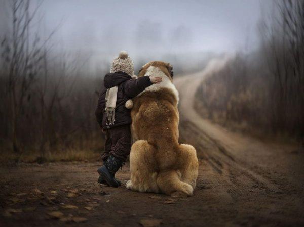 perros_grandes_ninos1