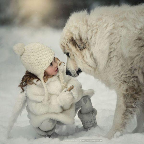 perros_grandes_ninos2
