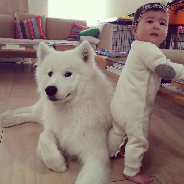 perros_grandes_ninos20