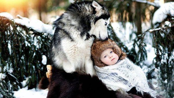 perros_grandes_ninos6