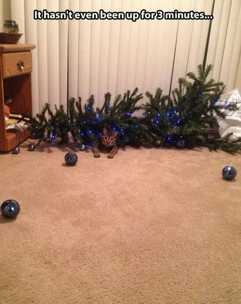 animales-navidad13