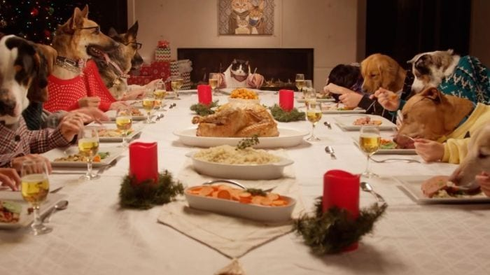 navidad animales