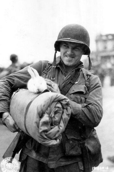 soldados y animales 4