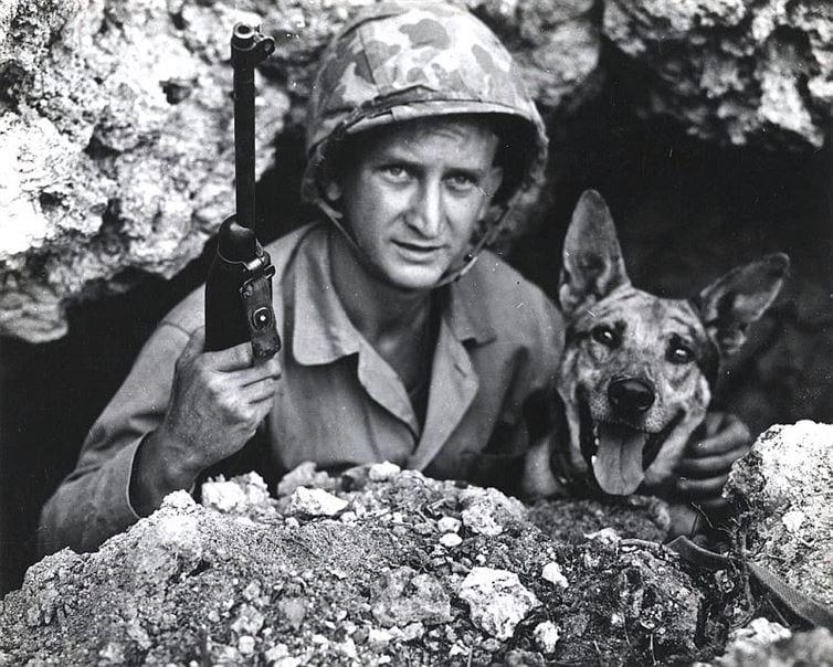 soldados y animales 8
