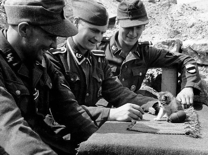soldados y animales 9