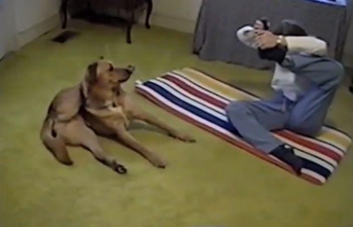 perro yoga