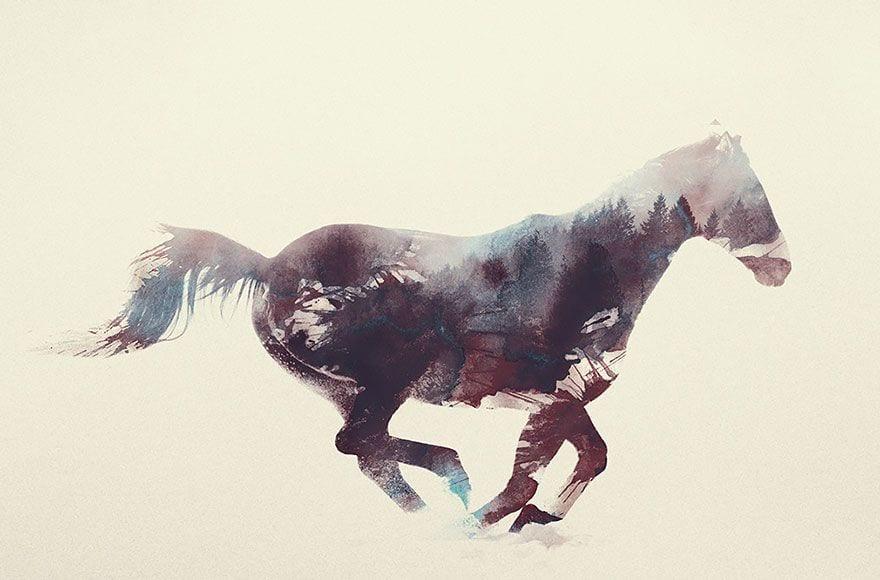 animales-naturaleza17