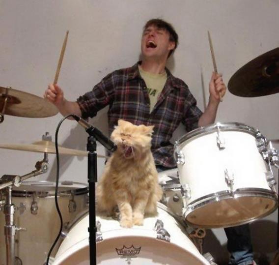 mascota-gato-feo-cantando-chico-bateria-microfono