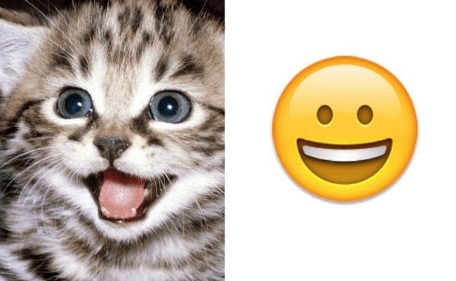 emoticonos-gatos-12