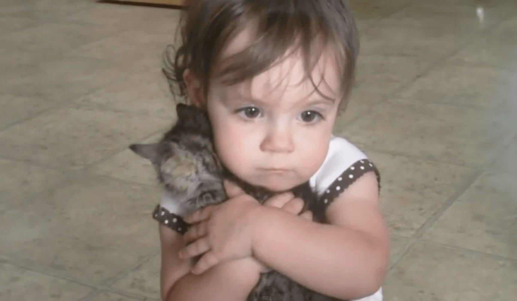 nina gatito destacada