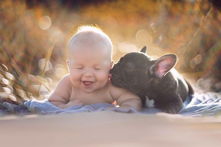 bebe_y_bulldog_1