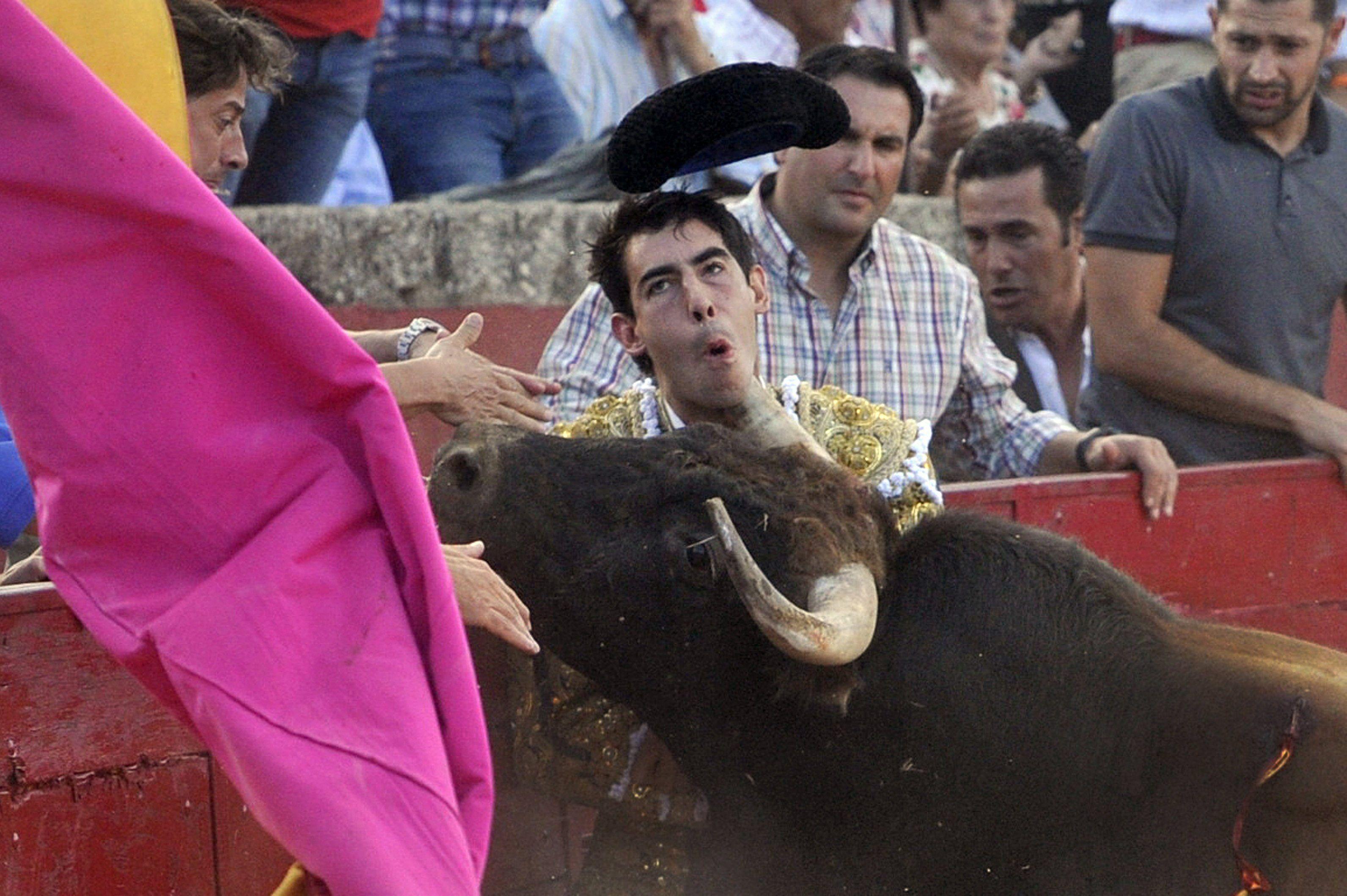 GRA235. VITIGUDINO (SALAMANCA), 16/08/2015.- Fotografía facilitada por La Gaceta de Salamanca, de la cornada que ha sufrido en el cuello el diestro malagueño Saúl Jiménez Fortes, cuando lidiaba al primero de su lote en la corrida de toros de esta tarde en la localidad salmantina de Vitigudino. LA GACETA DE SALAMANCA / BARROSO ***SOLO USO EDITORIAL***.