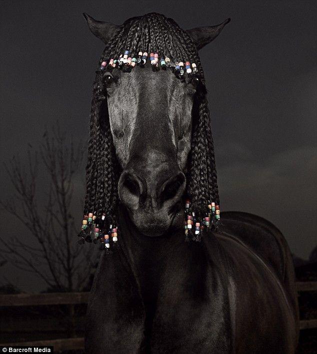 pelo-caballo-03