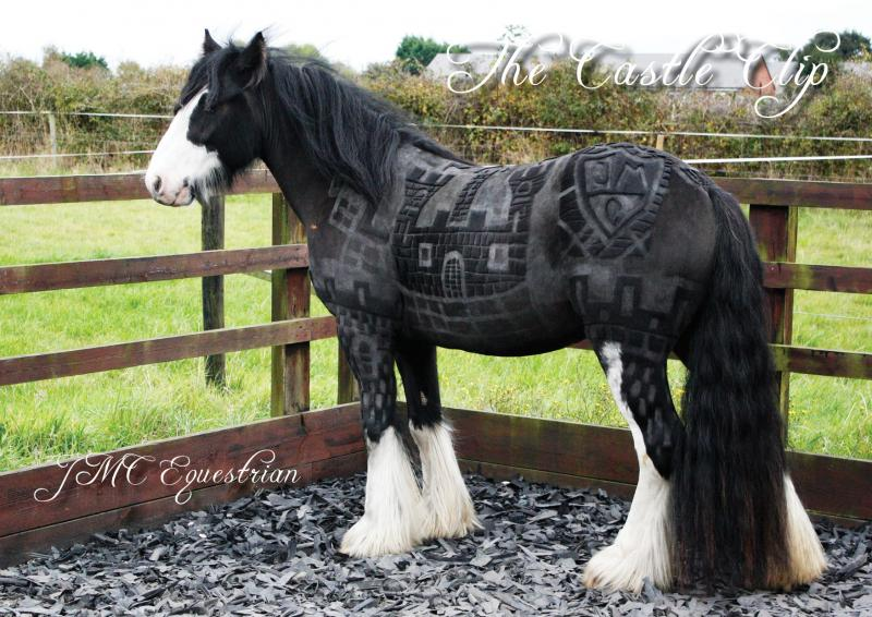 pelo-caballo-08