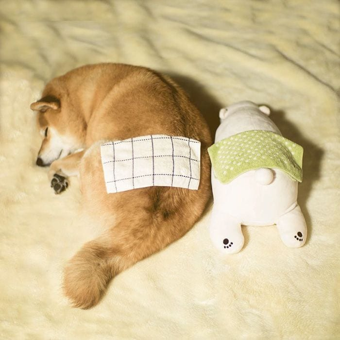 perro-peluche-07