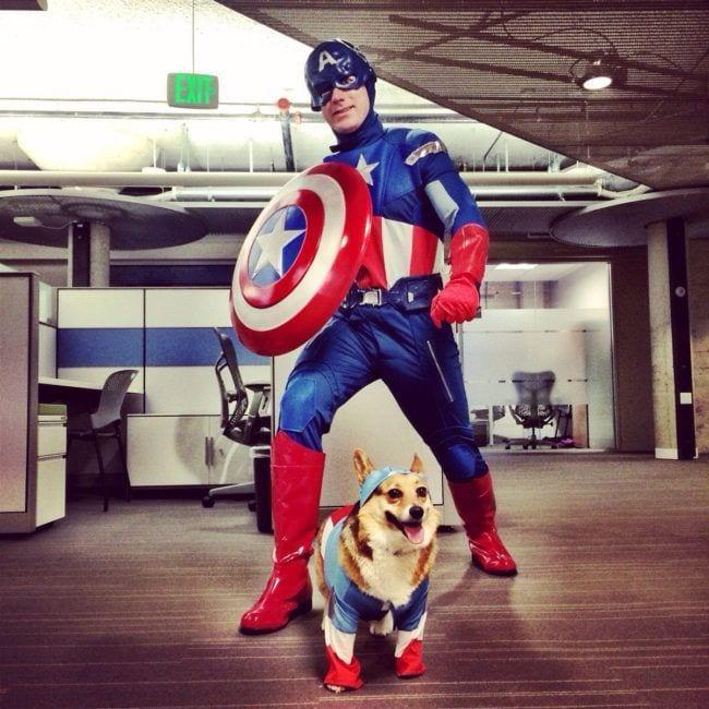 perros-en-la-oficina20