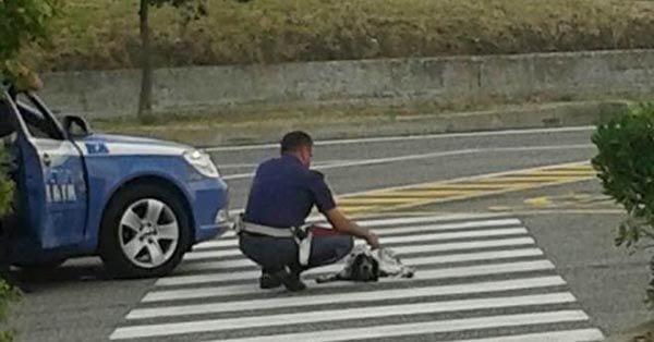 poliziotto cane1