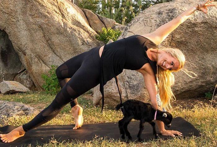 cabra yoga destacada
