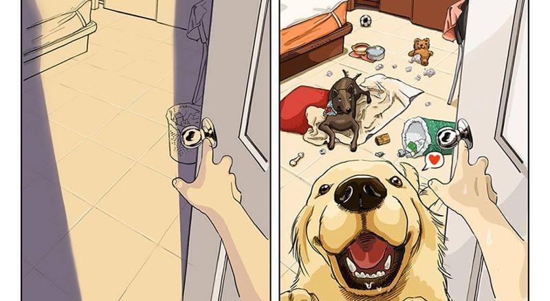 nueva vida con perro destacada
