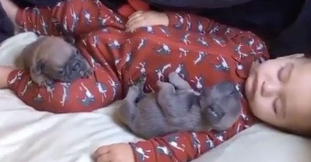 cahorros bebe