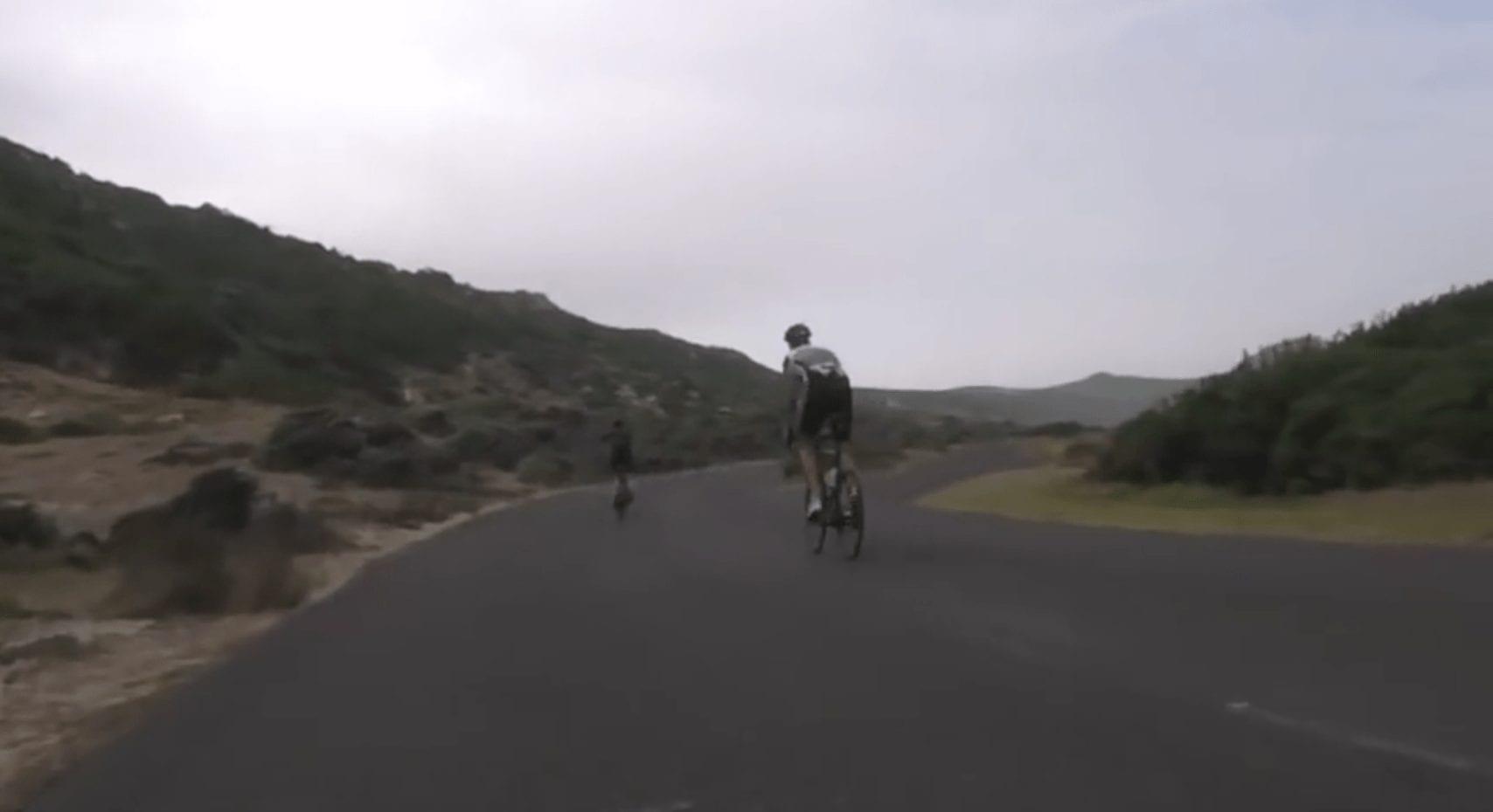 ciclistas avestruz 01