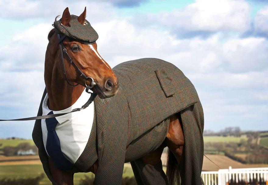 traje de tres piezas para caballo por emma sandham 1