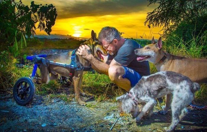 hombre-da-de-comer-80-perros-07