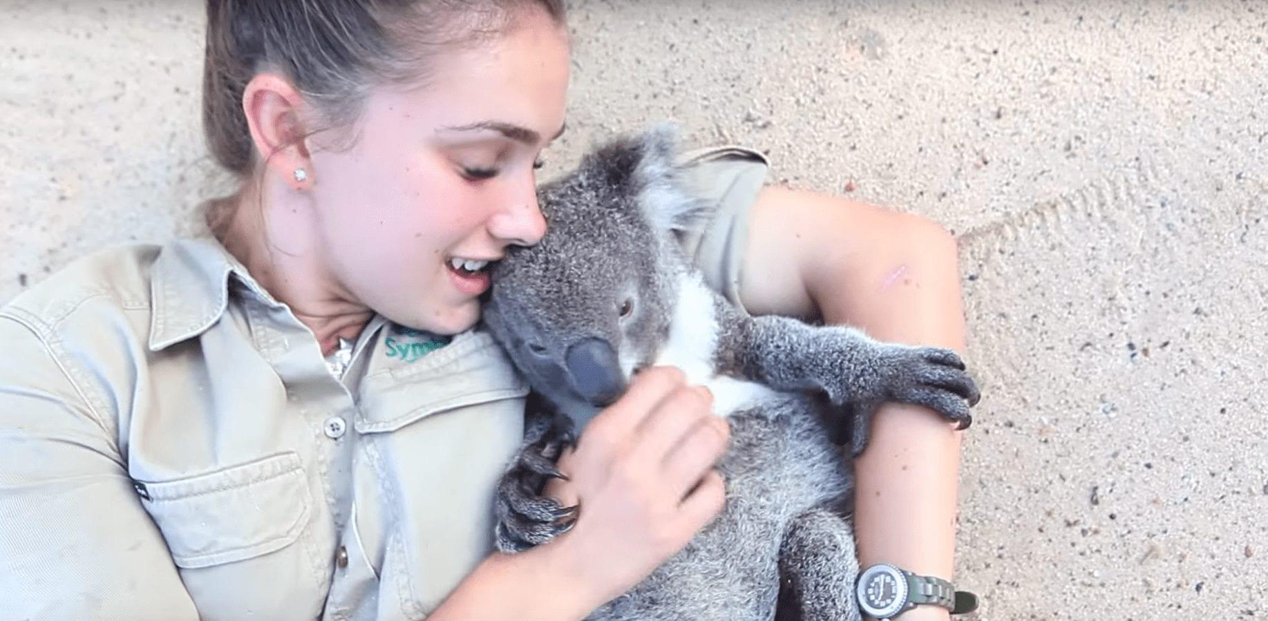koala-cuidadora-01