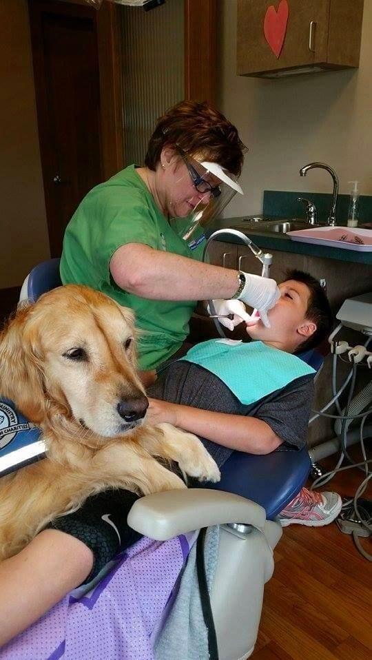 perro-dentista-03