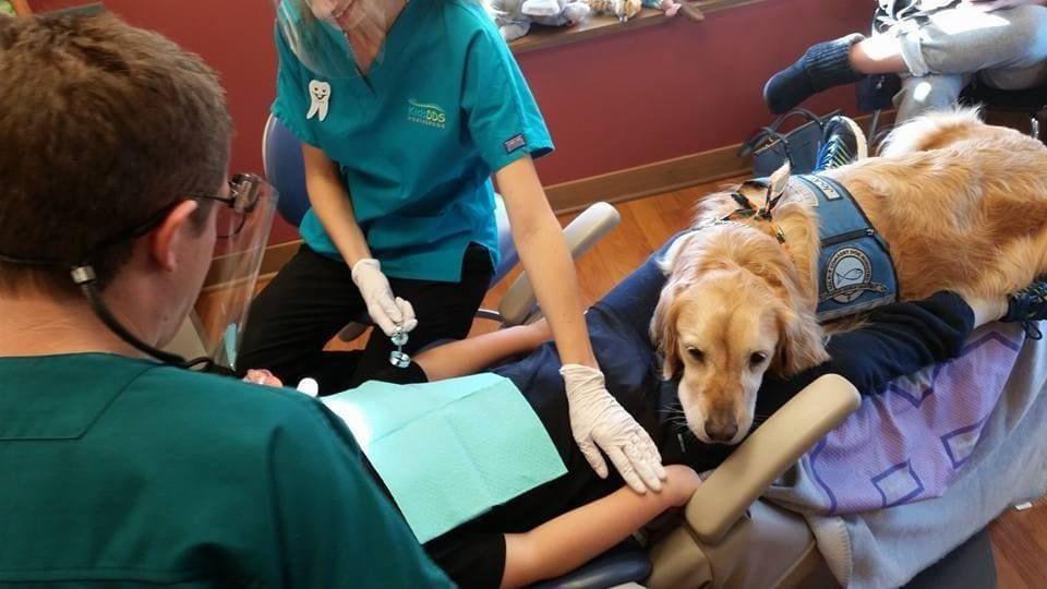 perro-dentista-04