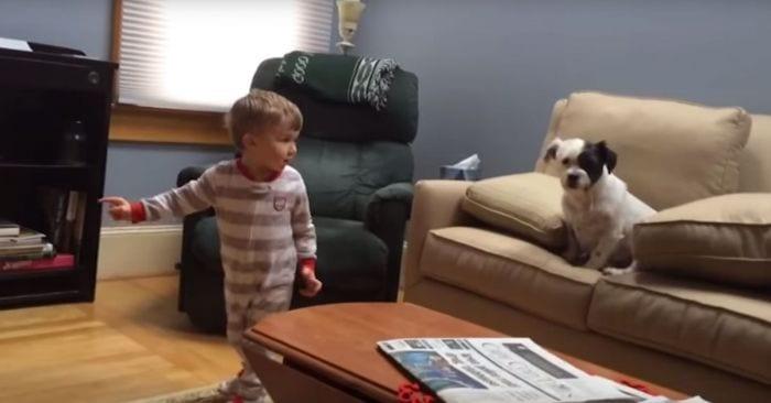 bebe nino perro pelota