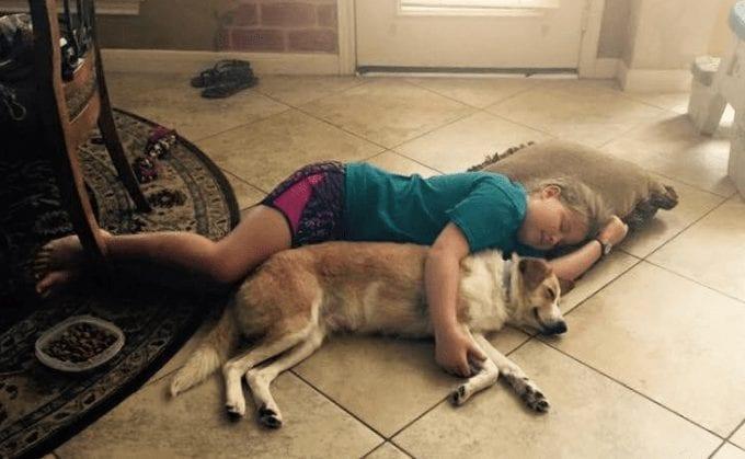 perro-rescatado4