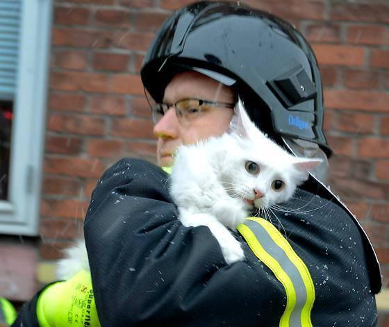 rescate-bomberos13