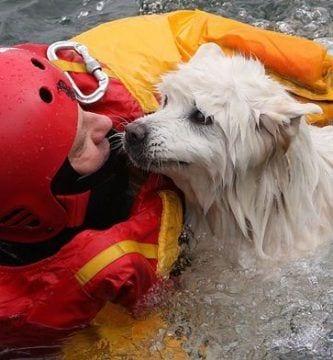 rescate bomberos15