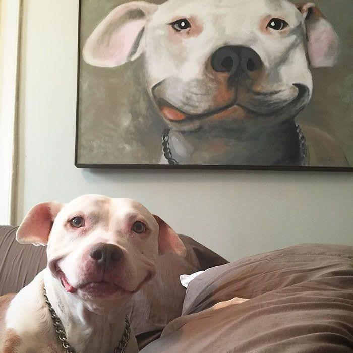 perro-sonriente4