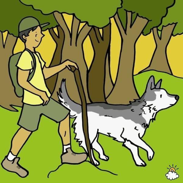 personalidad-razas-perro4