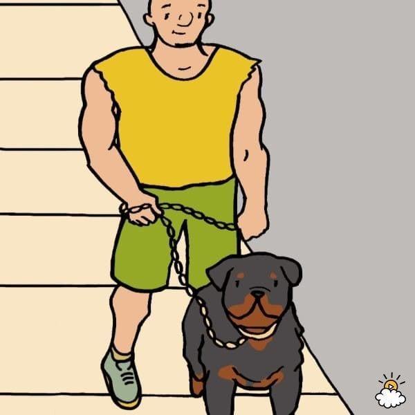 personalidad-razas-perro9