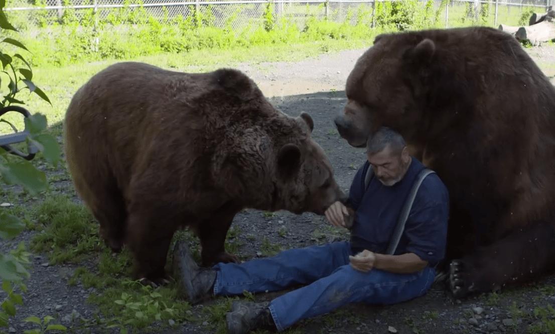 familia-osos4
