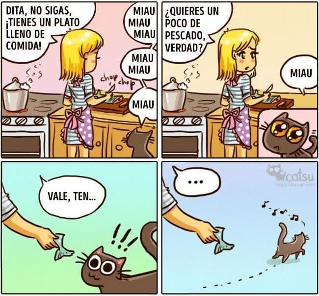 gatos-cambian-vida1