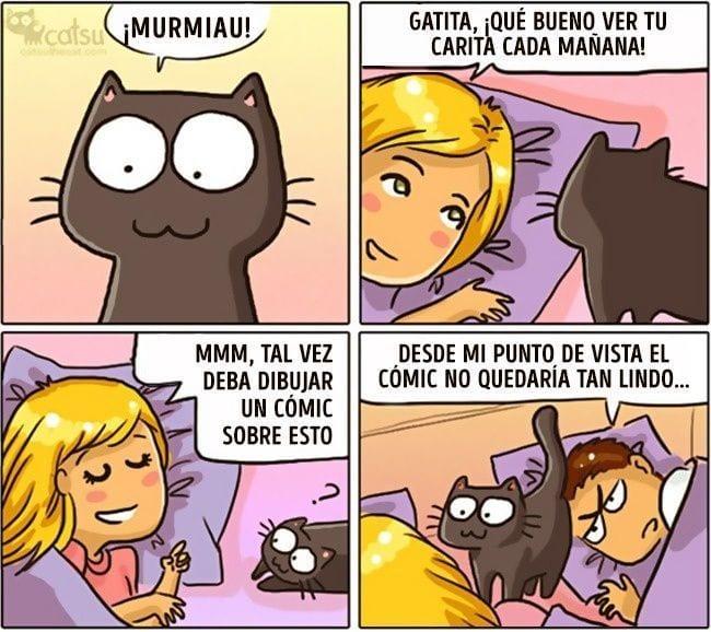 gatos-cambian-vida10