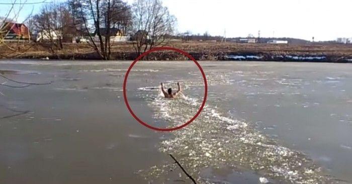 hombre perro hielo manos