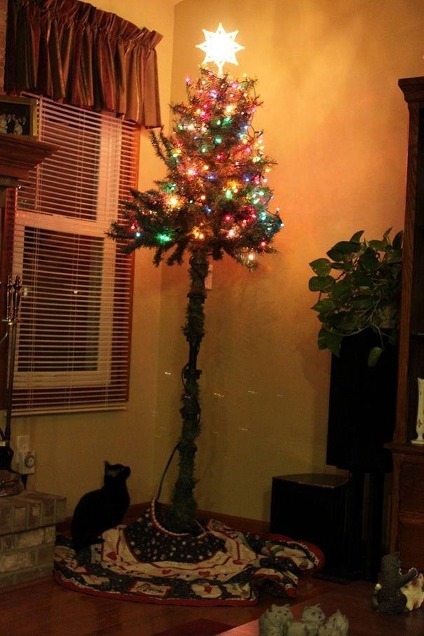 ejemplos-proteccion-arboles-navidad1