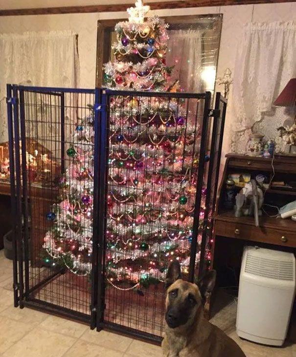 ejemplos-proteccion-arboles-navidad12