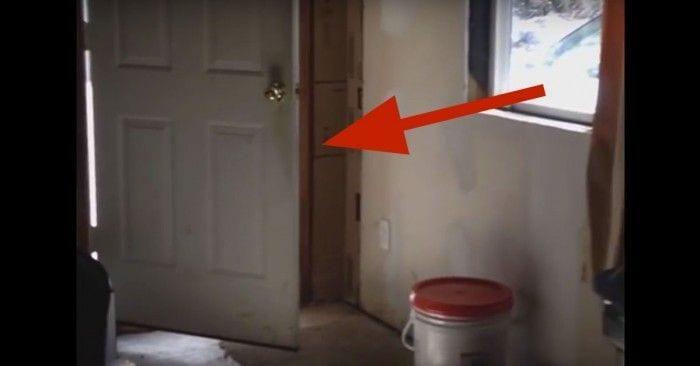 perro palo puerta