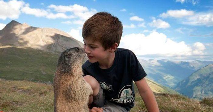 amistad marmotas e1532775779371