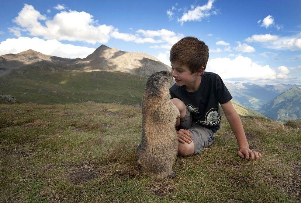 chico-amigo-marmotas4