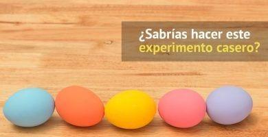 experimento huevos