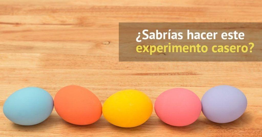 experimento-huevos